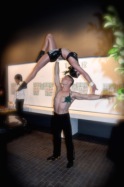 Artful Acrobats