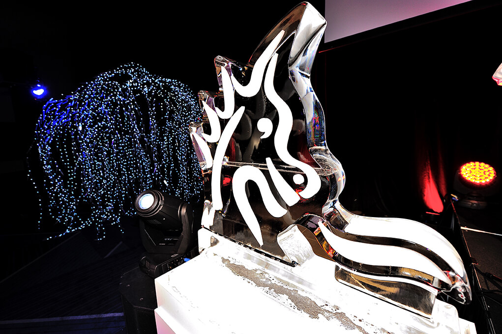 Corporate awards night-st george 2015-3-6-caporiea-ice sculpture
