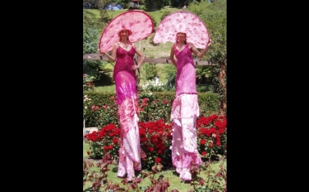 Pink Ladies on Stilts