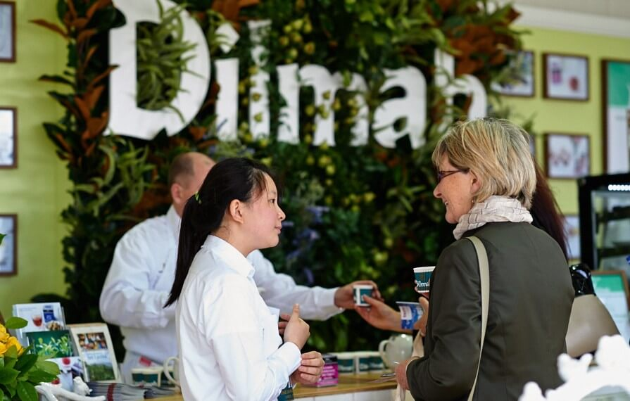brand activations-dilmah-tastes of melbourne-5