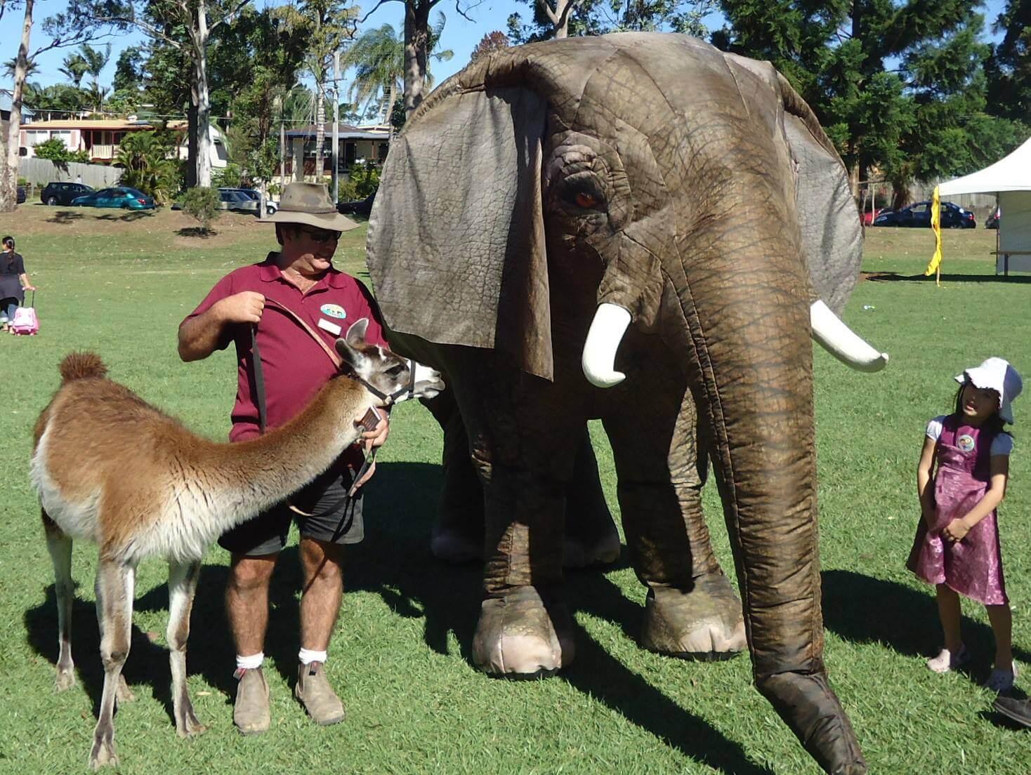 Eesha The Elephant
