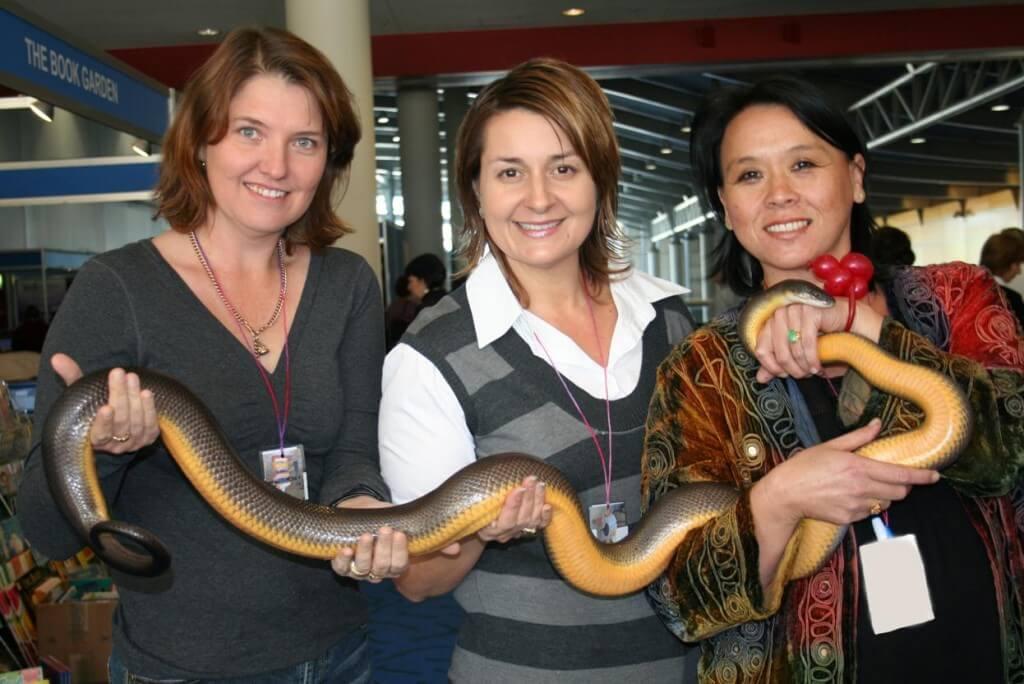 Snake Charmer QLD