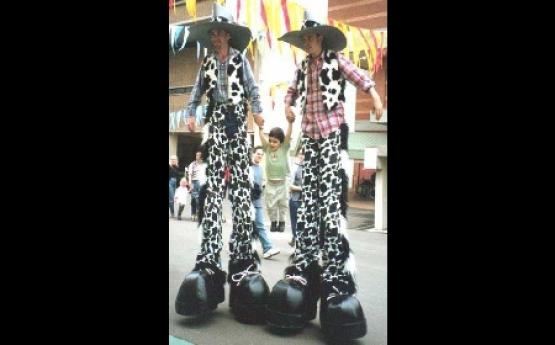 Cowboys  and  Rockers