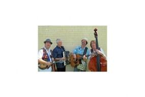 Free Selectors Bush Band
