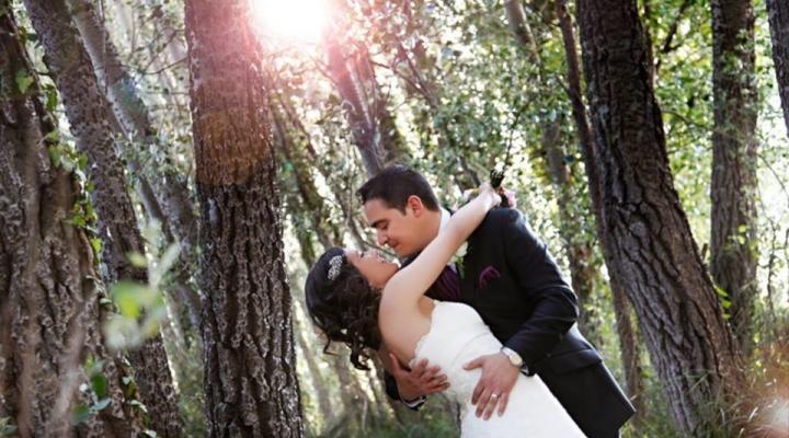 Wedding Reception – 20 Tips for Wedding Success