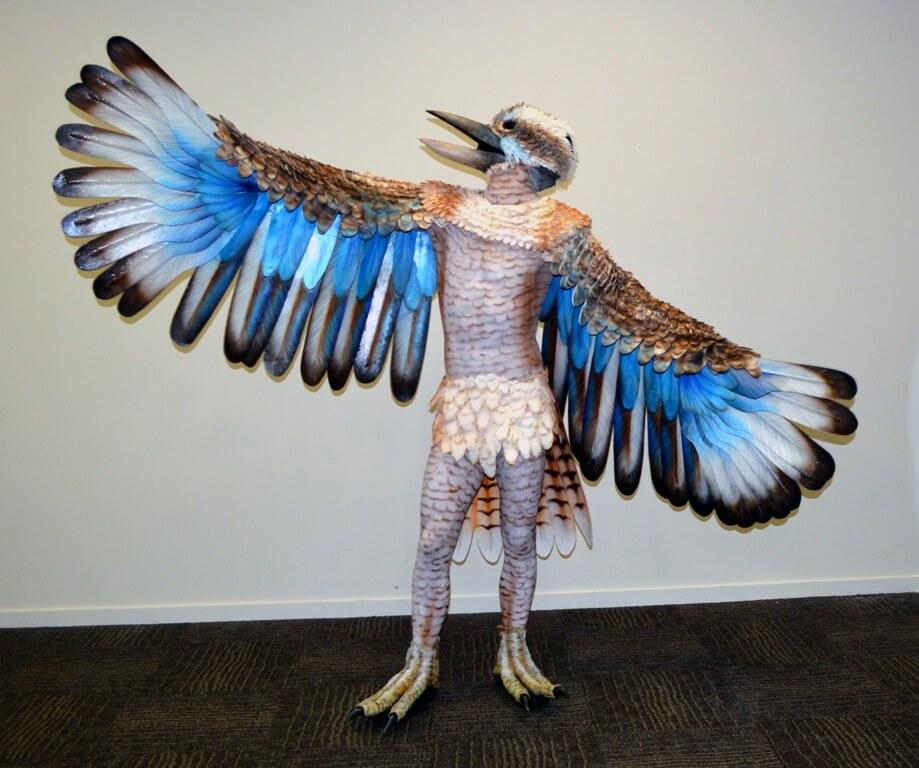 Kookaburra For Hire For Corporat Events