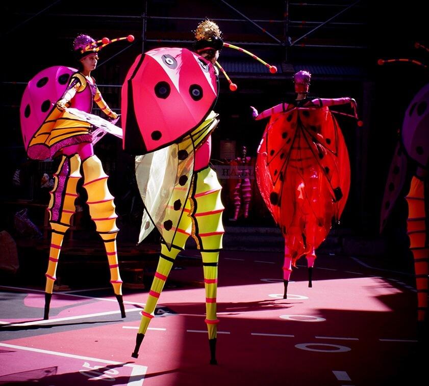 Lady Bug Opera
