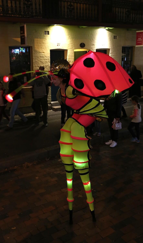 Solar Bugs
