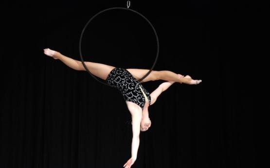 Tess Aerial Hoop