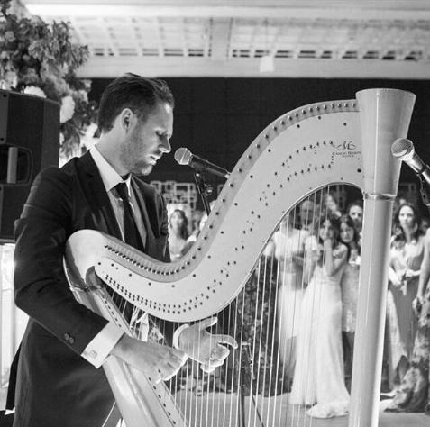 Electric Harp