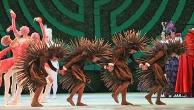Australian Ballet Wonderland